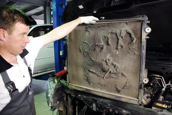 Промывка радиатора автомобиля своими руками